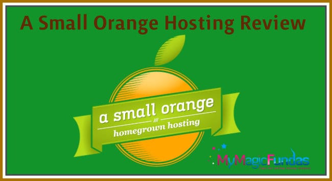 a-small-orange-review